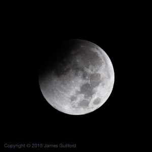 Photo: Partial Phase of Oct. 8, 2014 Lunar Eclipse. Photo by James Guilford.
